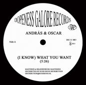 What U Want - Andras & Oscar